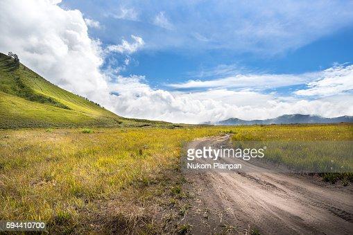 Savana landscape at Mt. Bromo, East Java, Indonesia