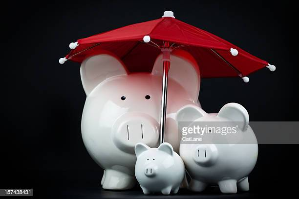 Saving for a Rainy Day-Familie