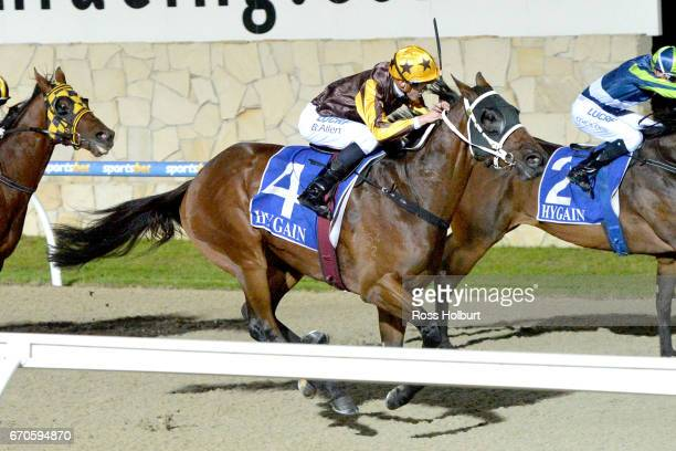 Savvy Bandit ridden by Ben Allen wins the Star News Group BM64 Handicap at Racingcom Park Synthetic Racecourse on April 20 2017 in Pakenham Australia