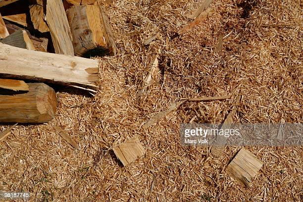 Sawdust and pieces of wood