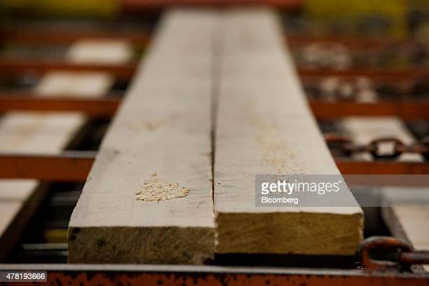 Sawdust sits on top of freshly processed lumber at the West Fraser Timber Co sawmill in Quesnel British Columbia Canada on Friday June 5 2015 Since...