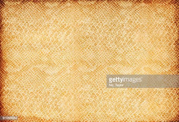 Scale Paper