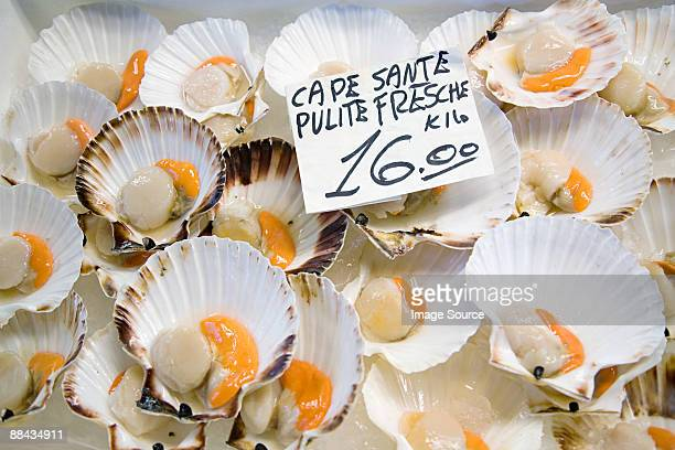 Scallops on a market stall