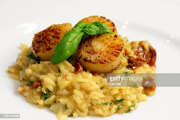 Scallops on tomato risotto