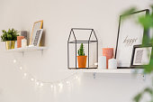 Shelves with frames, plants, lights and other decorations in scandynavian style