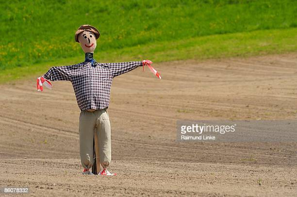 Scarecrow in farm field, Canton Zurich, Switzerland