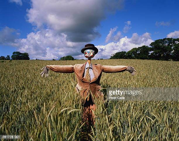 Scarecrow in jacket and tie standing in field
