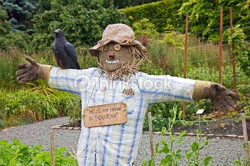 Scarecrow in pollok park stock photo thinkstock - Deco jardin halloween ...