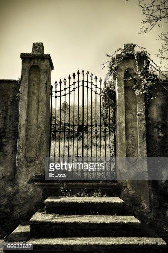 Scary antique gate monotone