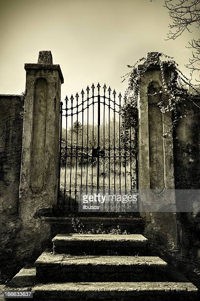 Scary antique gate monotone