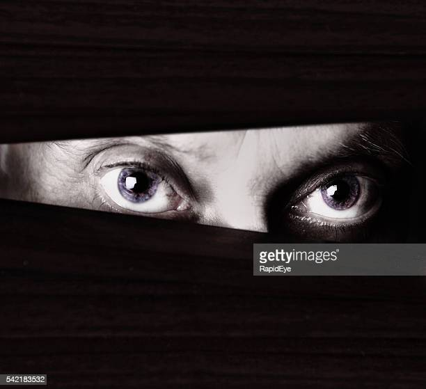 Scary eyes staring through blinds in monochrome close up
