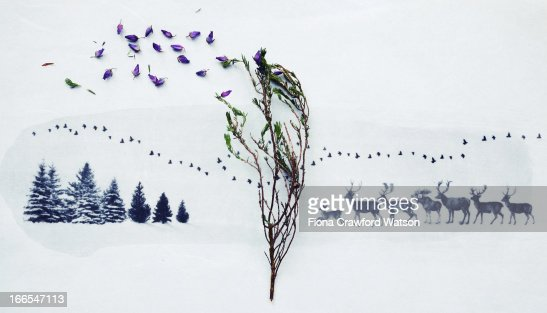 Scattered heather on an image of trees and deer : Stock Photo