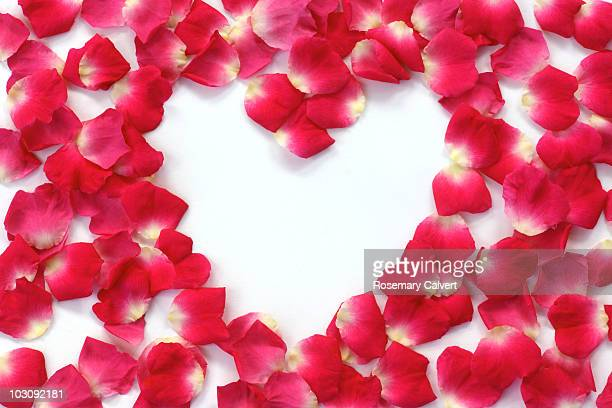 Scattered pink rose petals enclosing heart shape.