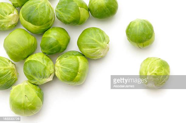 Scattered Sprouts