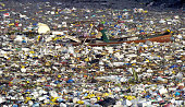 A scavenger in a dugout canoe paddles through a sea of garbage along a Manila waterway 06 November 2005 The Philippines is struggling to avert a...