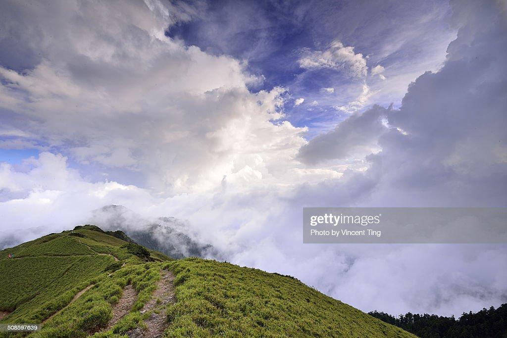 Scene at Mountain Hehuan, Taiwan : Foto de stock