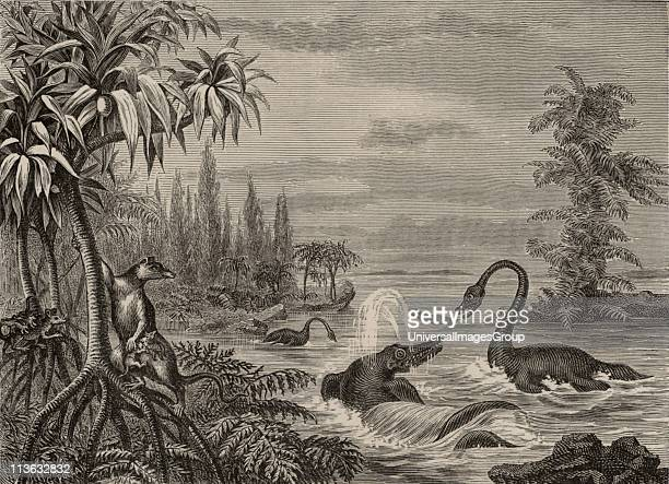 Scene during the Lower Oolite period showing reconstructions of Ichthyosaurus Plesiosaurus and a Marsupial From The Popular Encyclopaedia Engraving