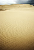 Scene of Tottori-Dune