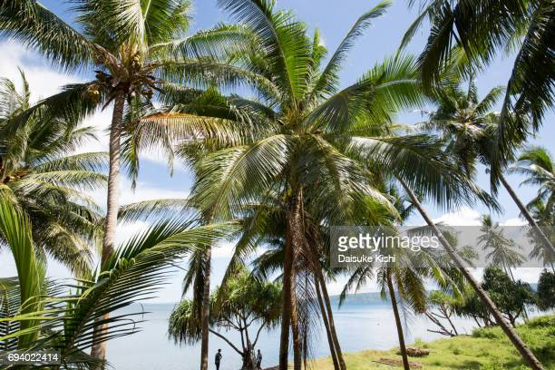 Scenery of Rabaul, Papua New Guinea