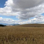 Camino de Santiago Scenery to Compostela Pleasant hiking