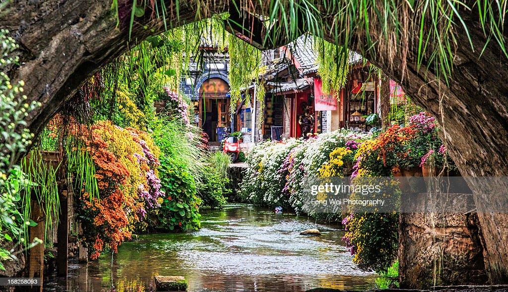 Scenery Under Bridge, Lijiang Yunnan China