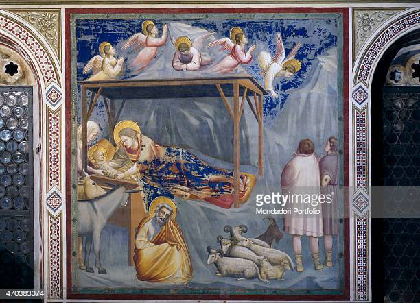 'Scenes from the Life of Christ Nativity Birth of Jesus by Giotto 1304 1306 14th Century fresco Italy Veneto Padua Scrovegni Chapel Whole artwork...