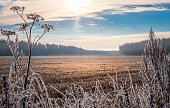 Scenic and bright landscape with sunrise at frosty autumn morning
