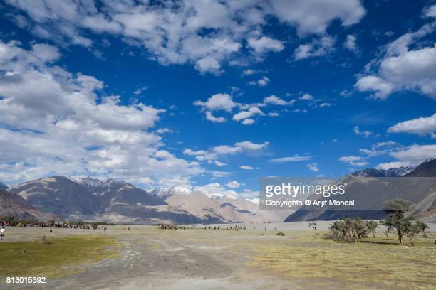Scenic beauty of Hunder Sand dunes, Nubra Valley with blue sky