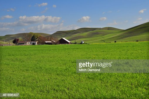 scenic green countryside