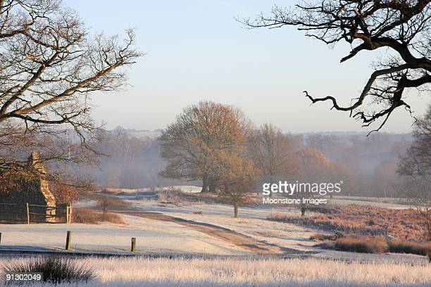 Scenic image of Southeast England under frost