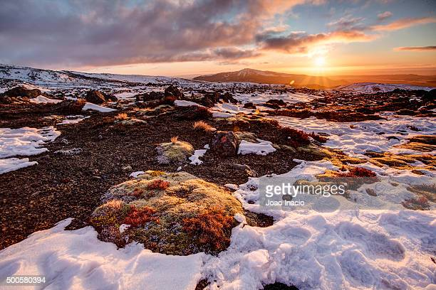 Scenic landscape at Mt Ruapehu, New Zealand