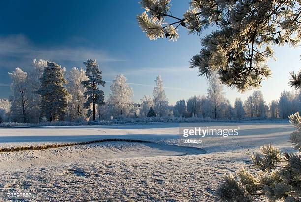 Scenic photograph of winter landscape