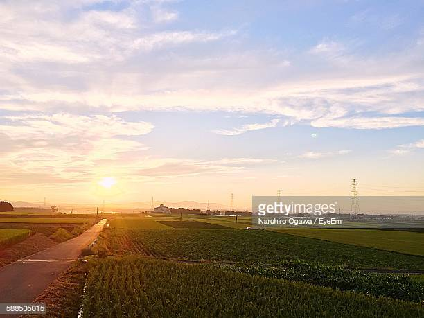Scenic View Of Agricultural Field Against Sky At Morning