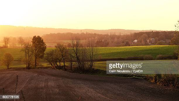 Scenic View Of Agricultural Field Against Sky During Sunrise
