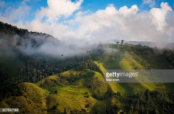 Scenic view of Cocora Valley near Salento in Columbia