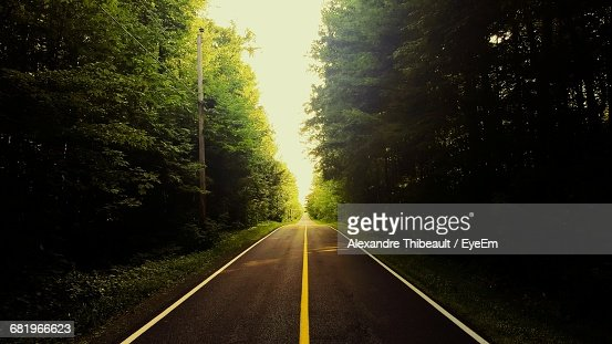 Scenic View Of Country Road Passing Through Trees