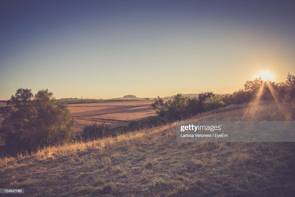 Scenic View Of Field Against Clear Sky At Sunset : Stock-Foto