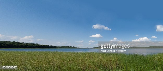 Scenic View Of Grassy Landscape In Front Of Lake Against Blue Sky