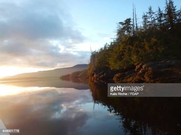 Scenic view of idyllic lake