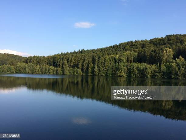 Scenic View Of Lake In Forest Against Blue Sky