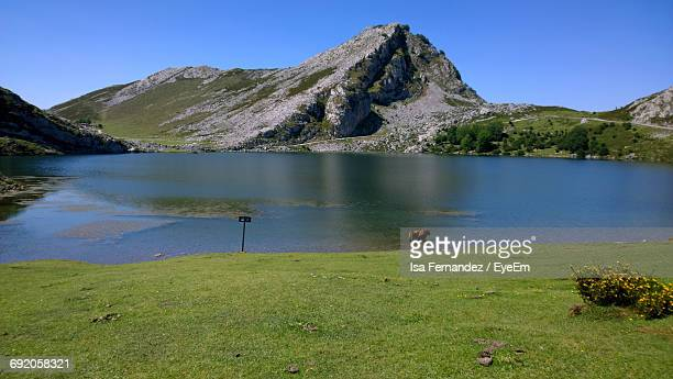 Scenic View Of Lake
