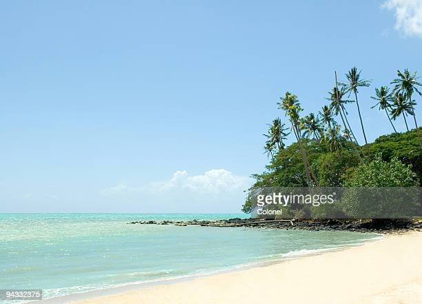 A scenic view of Pacific Island Beach