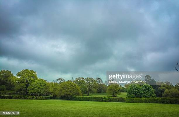 Scenic View Of Park Against Cloudy Sky
