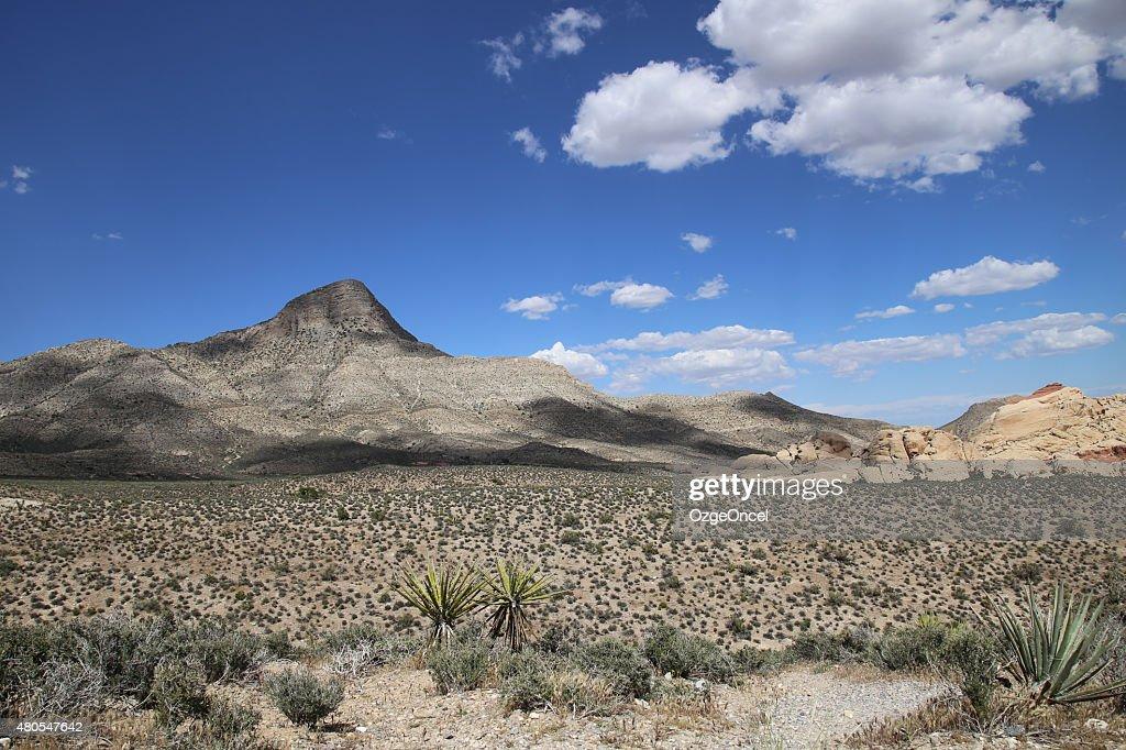 Vista panorámica del Cañón Red Rock, el hotel Las Vegas : Foto de stock