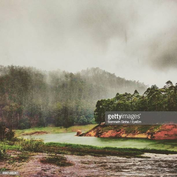 Scenic View Of River Against Trees During Rain