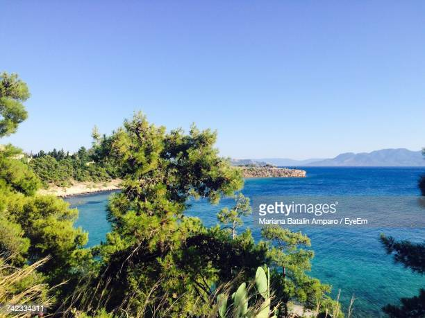 Scenic View Of Sea And Trees Against Clear Blue Sky