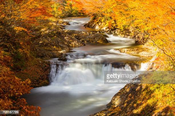 Scenic View Of Small Waterfall In Forest During Autumn