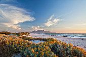 landmark travel destination in south africa