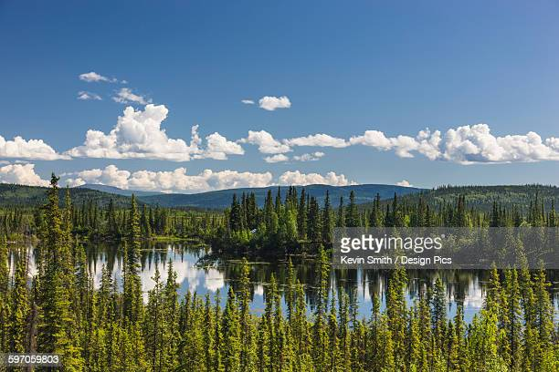 Scenic view of the Canadian side of the the Canada/US border, Yukon Territory, Summer