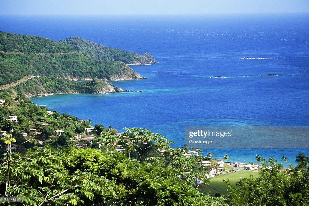 Scenic view of the island of Tobago on a sunny day, Caribbean
